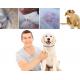 Natuurlijke Vlooien en Teken Halsband voor Honden