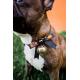 Halloween halsband voor honden